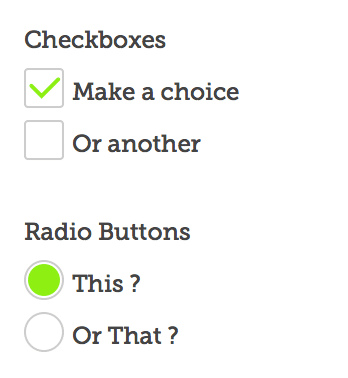 custom checkbox and radio button styled