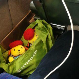 2 wapuus dans un sac